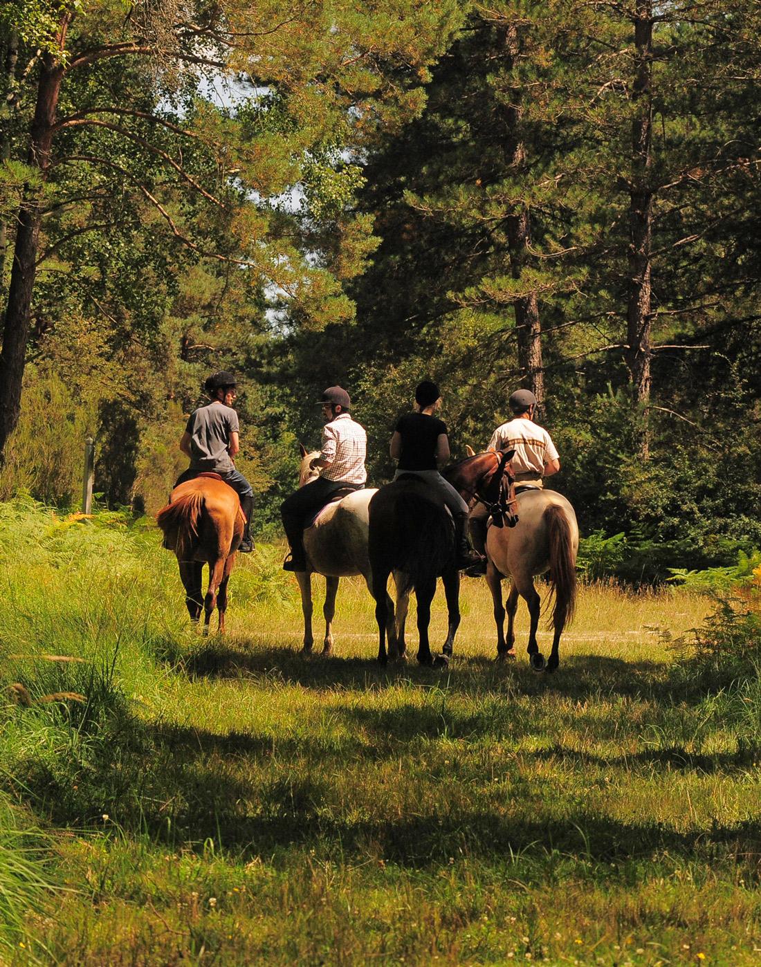 Horseback riding activity in Chambord.